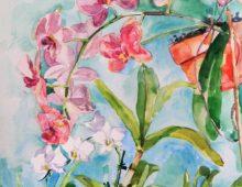 Gasparilla Orchids