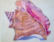 Harbour Island Conch